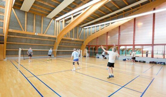 Tab Badminton 2